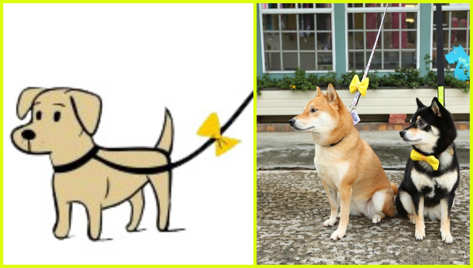 """Képtalálat a következőre: """"yellow dog project"""""""
