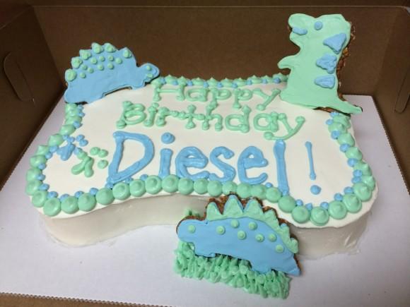 dinosaur doggie cake diesel