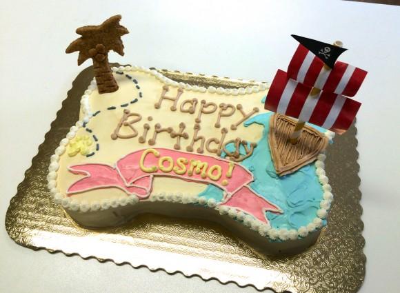 Cosmo - custom pirate dog cake