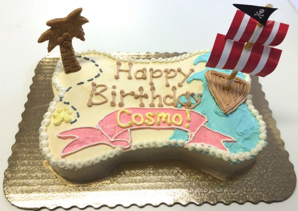 Cosmo - custom pirate party cake