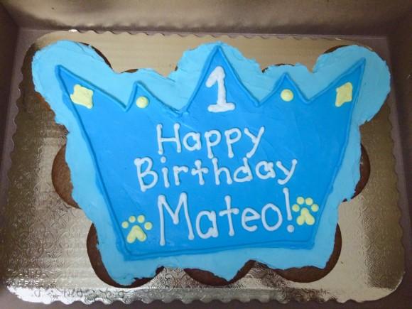 Crown Mutt Muffin Cake - Mateo - 1
