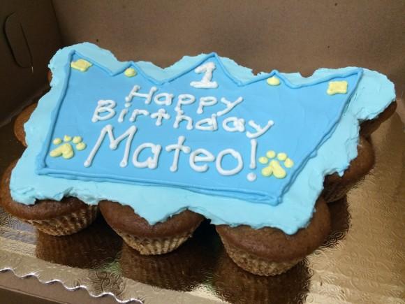 Crown Mutt Muffin Cake - Mateo - 3