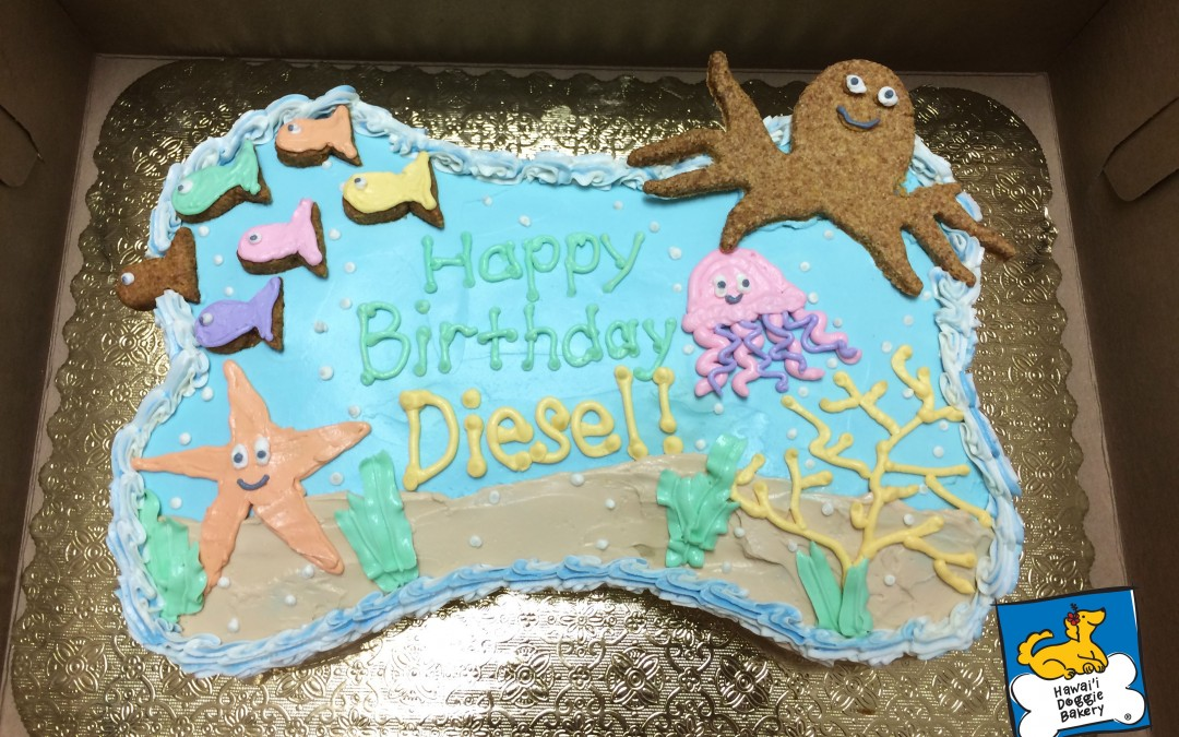 Specialty Cakes: Under the Sea!