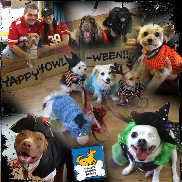 PHOTOS: Trick or Treat for Dogs at Hawai`i Doggie Bakery!