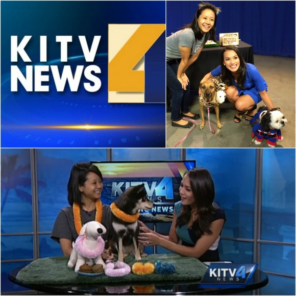 kitv 2015 Collage