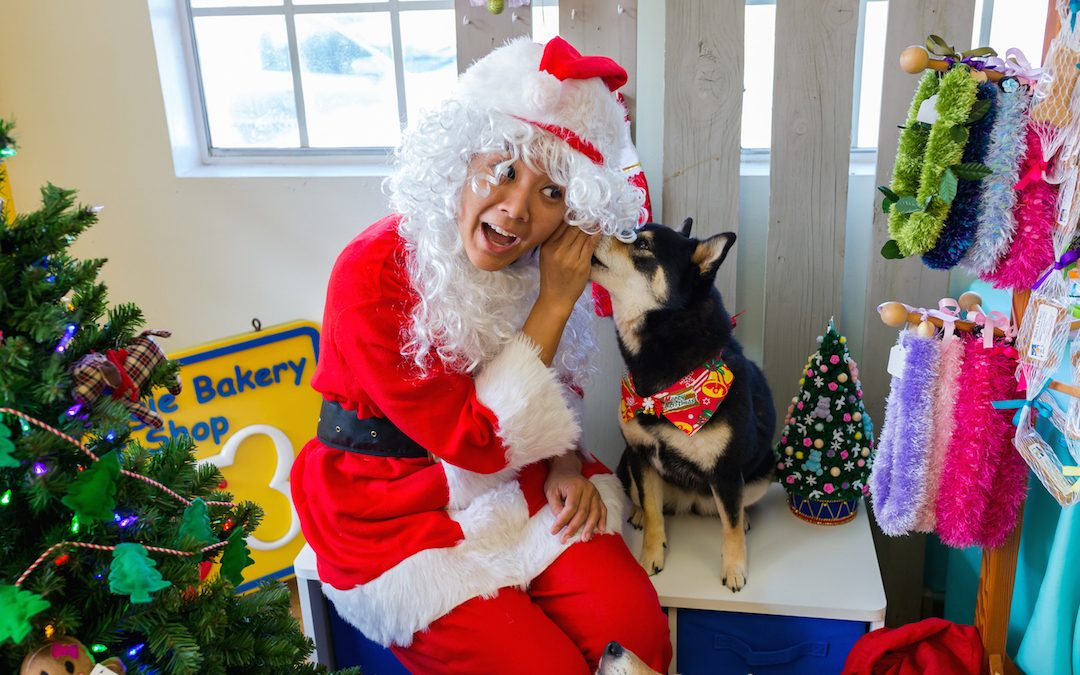 1st Ever Christmas In July WOOF-TACULAR!