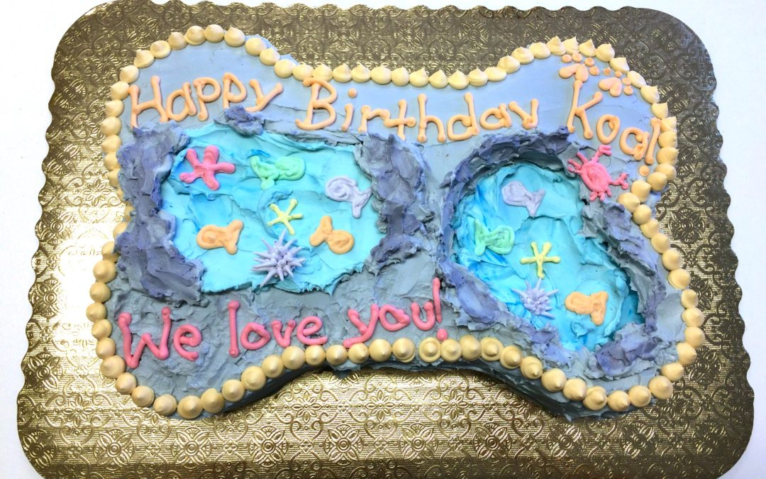 Specialty Cakes Tidepool Theme